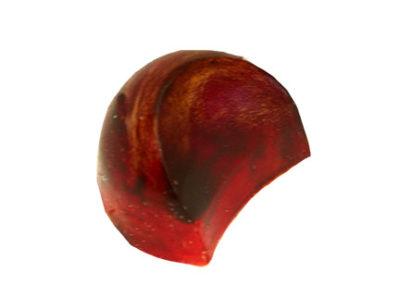 Raspberry (half moon)